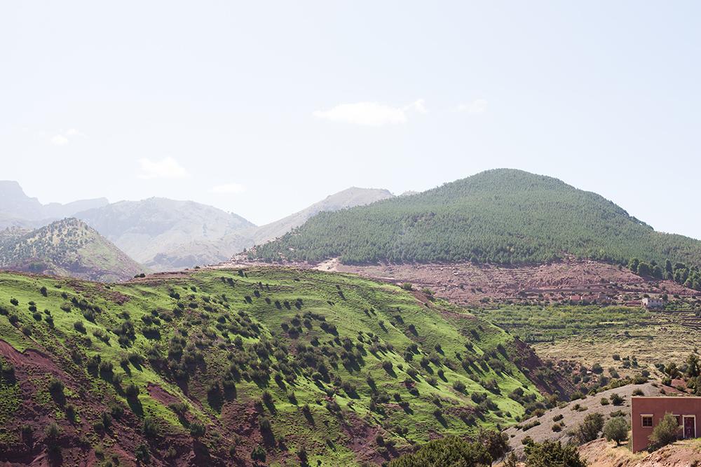 Tagesausflug ins Atlasgebirge mit Abholung in Marrakesch