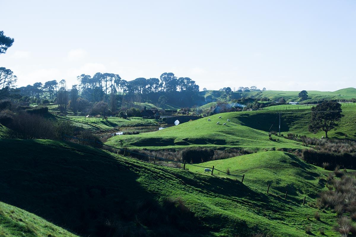 Kosten meiner Neuseelandreise (Zwei Wochen)