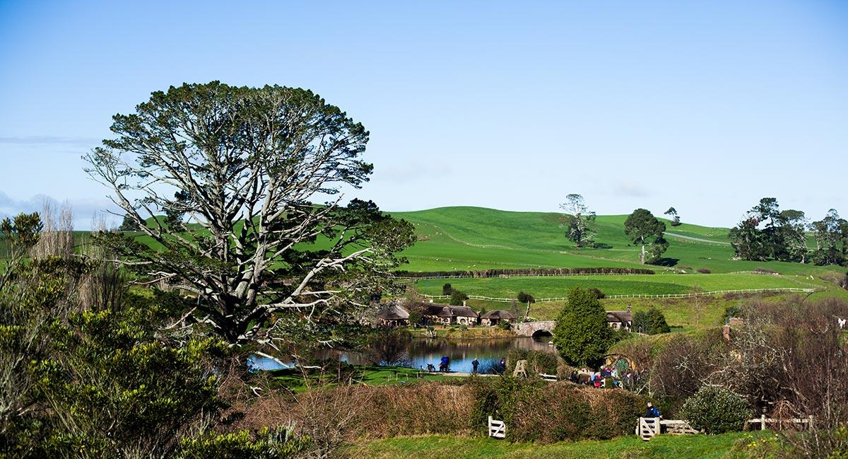 Tagestrip: Von Auckland nach Hobbiton