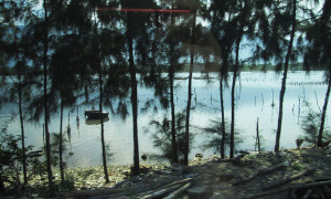 [Vietnam] – The Environment