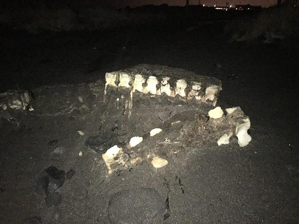 Island_Reykjavik (1)