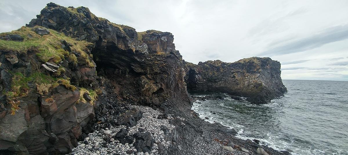 Lämmchen und Whalewatching in Hellnar, Island