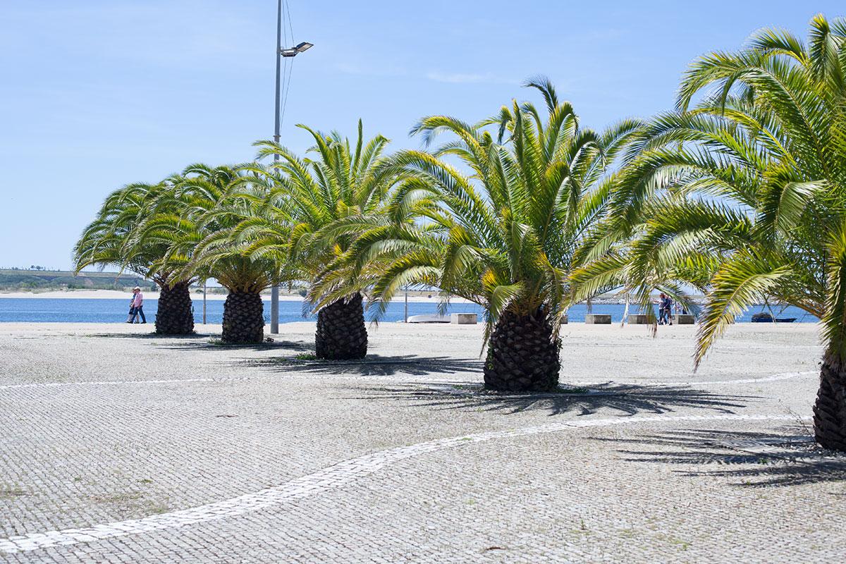 Portugal Porto Fotos Urlaub (2)