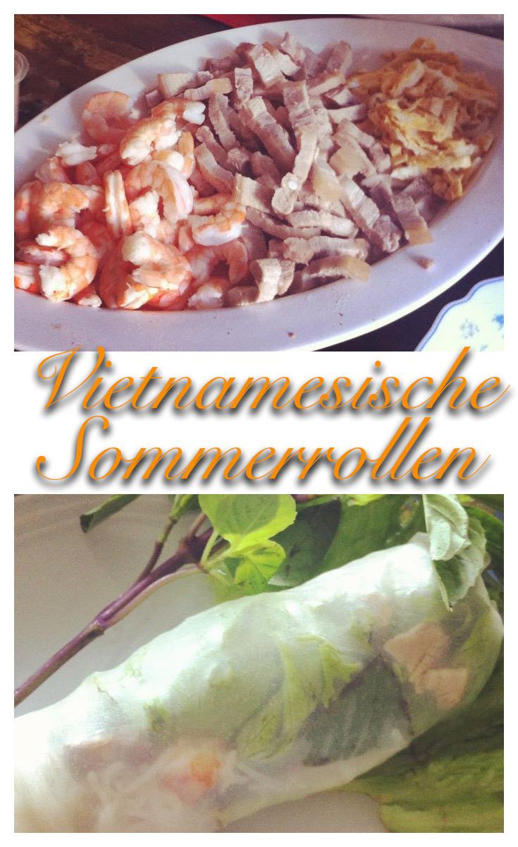 Goi Cuon Vietnamesische Sommerrollen 3