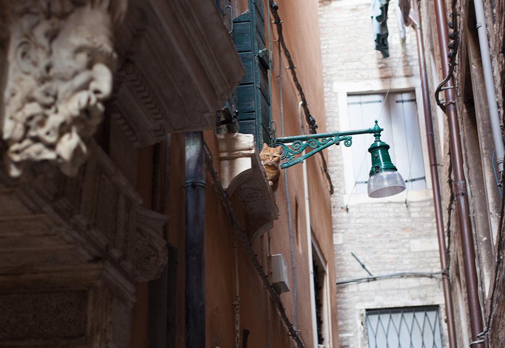 Venedig als Urlaubsziel - 5 Highlights 6